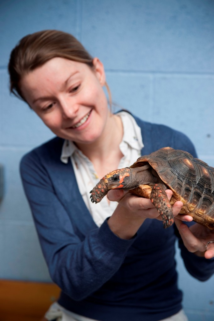 Anna Wilkinson with Moses the red-footed tortoise